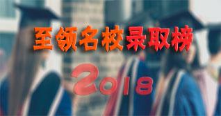 2018至领名校录取榜